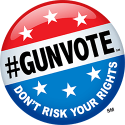 #GUNVOTE Pin - Don't risk your rights